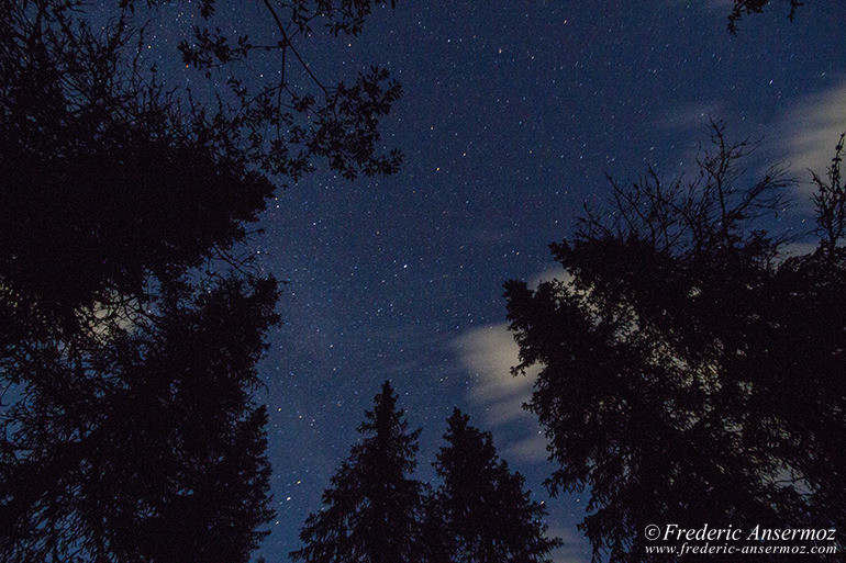 camping-under-starry-sky