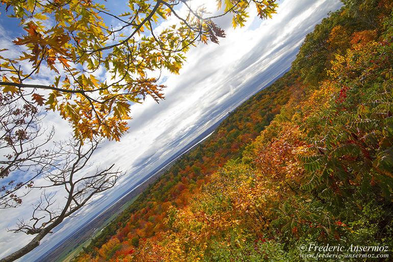 autumn-leaves-colors-032
