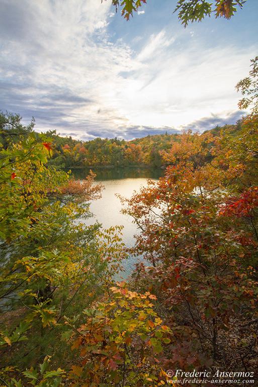 autumn-leaves-colors-034