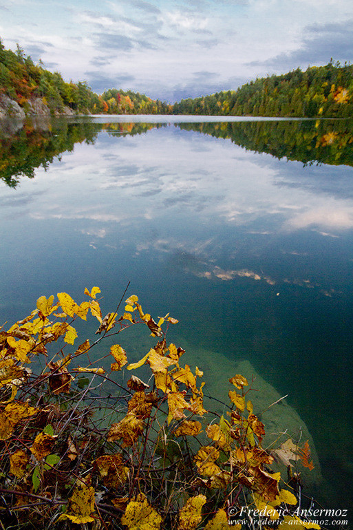 autumn-leaves-colors-036