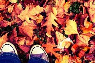 miranda-pang-photograhy-feet