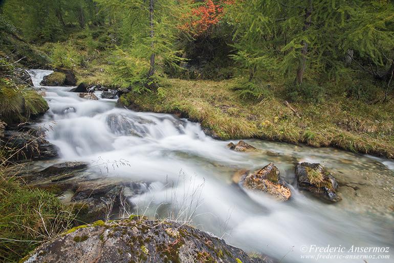 autumn-leaves-colors-019