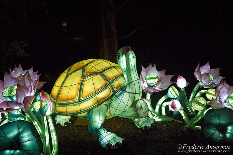 lantern-montreal-festival-04