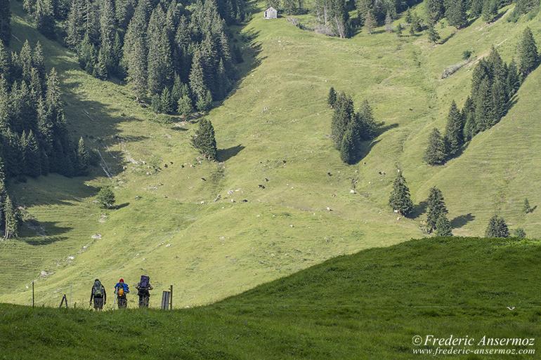hiking-switzerland-05