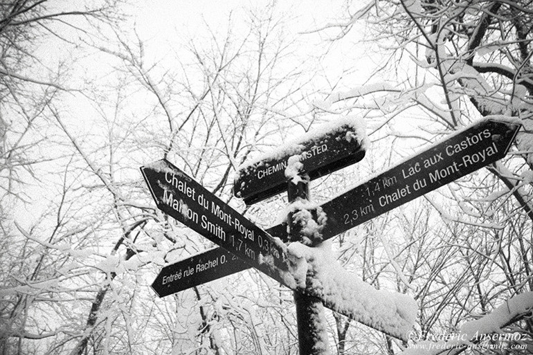 montreal-winter-01