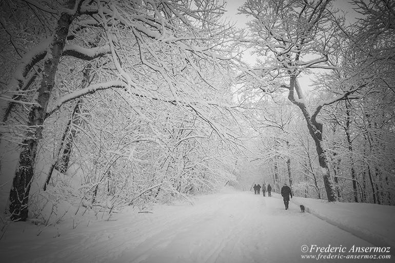 montreal-winter-04