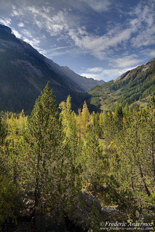 suisse-nature-09