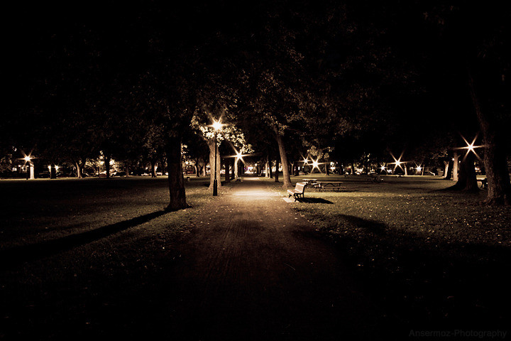 Ansermoz photography night park
