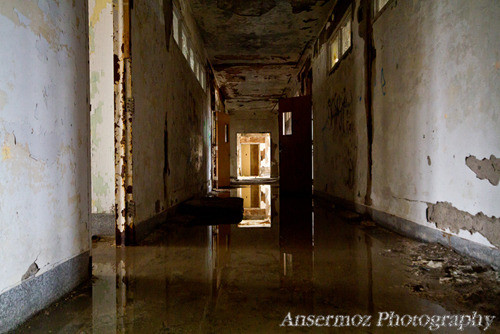 Abandoned building corridor swamped