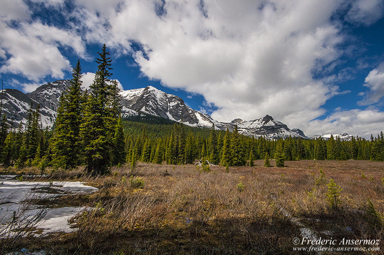 Kananaskis country 09