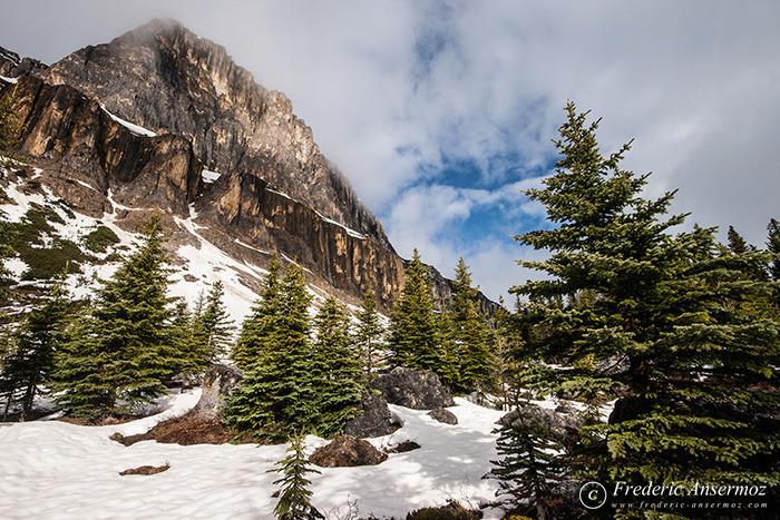 02 snowy mountain alberta