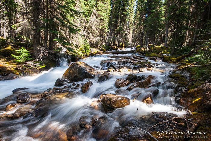 07 river torrent forest