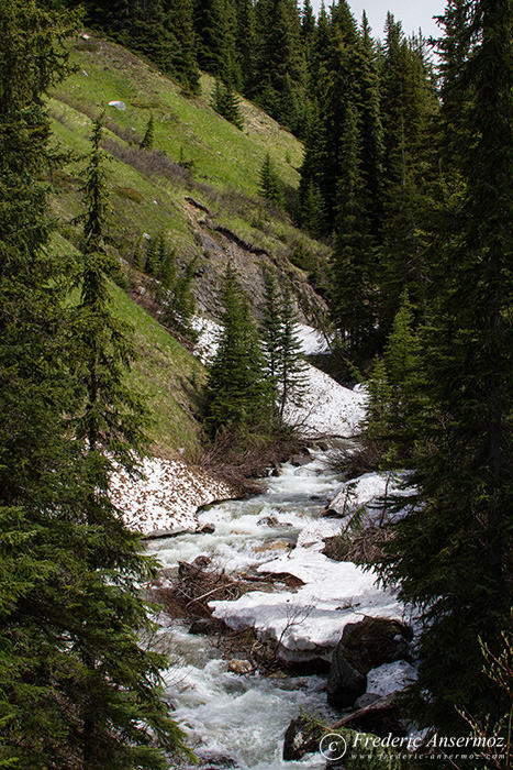 22 mountain river torrent