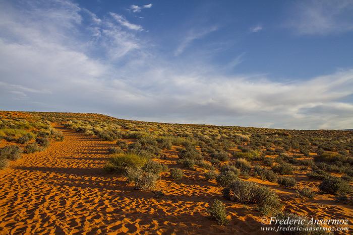 Arizona desert 0854