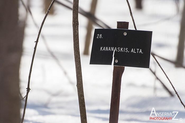 Arboretum morgan parc agricole 037