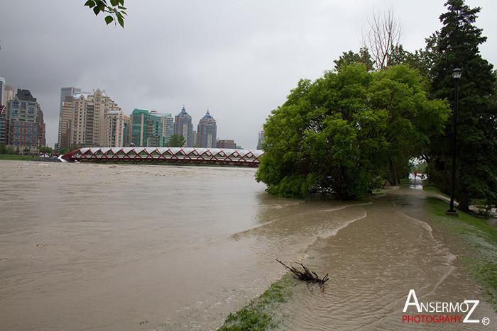 Calgary flood 2013 009