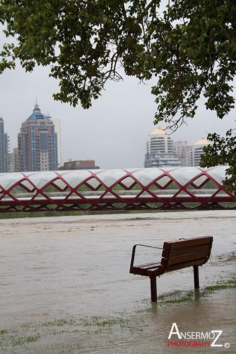 Calgary flood 2013 011