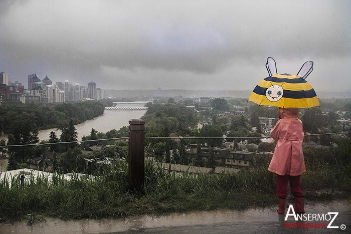 Calgary flood 2013 044