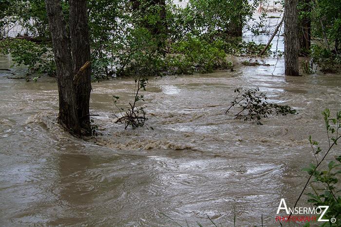 Calgary flood 2013 013