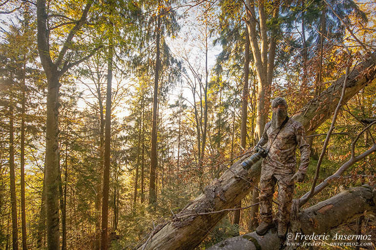 13 autumn camouflage photography