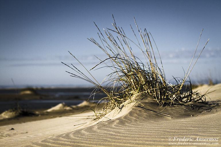 Mediterranee plage 12