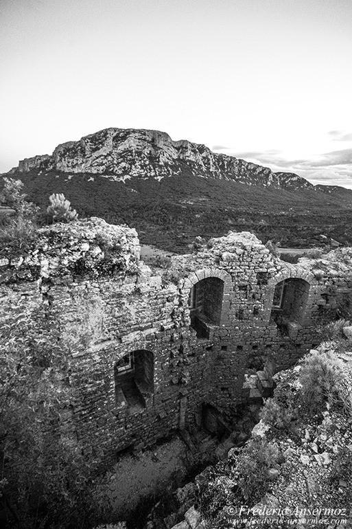 Chateau vivouires 05
