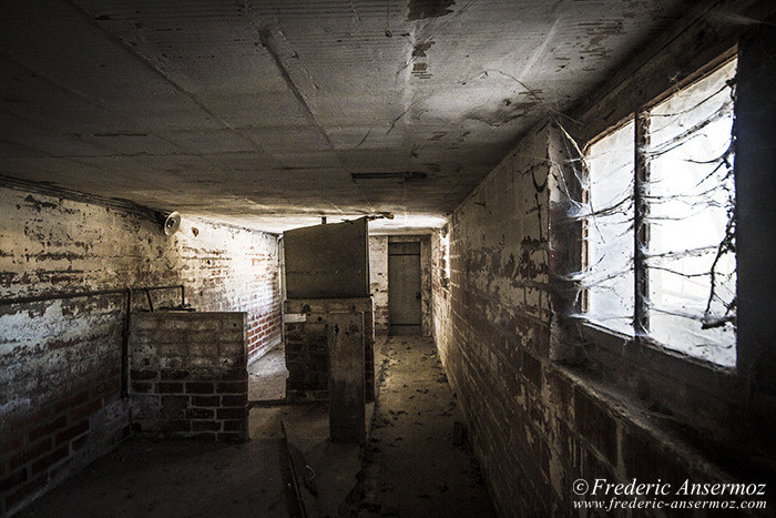 Abandoned farm 21