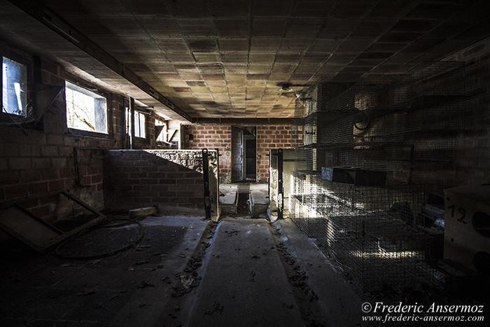 Abandoned farm 32