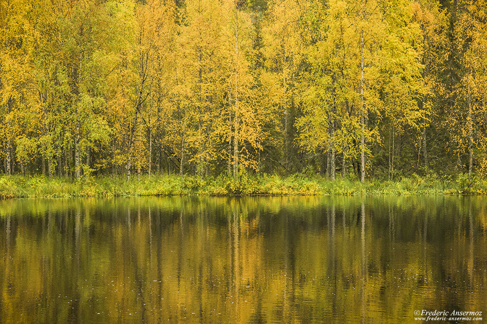 Autmn colors in Finland, water reflection