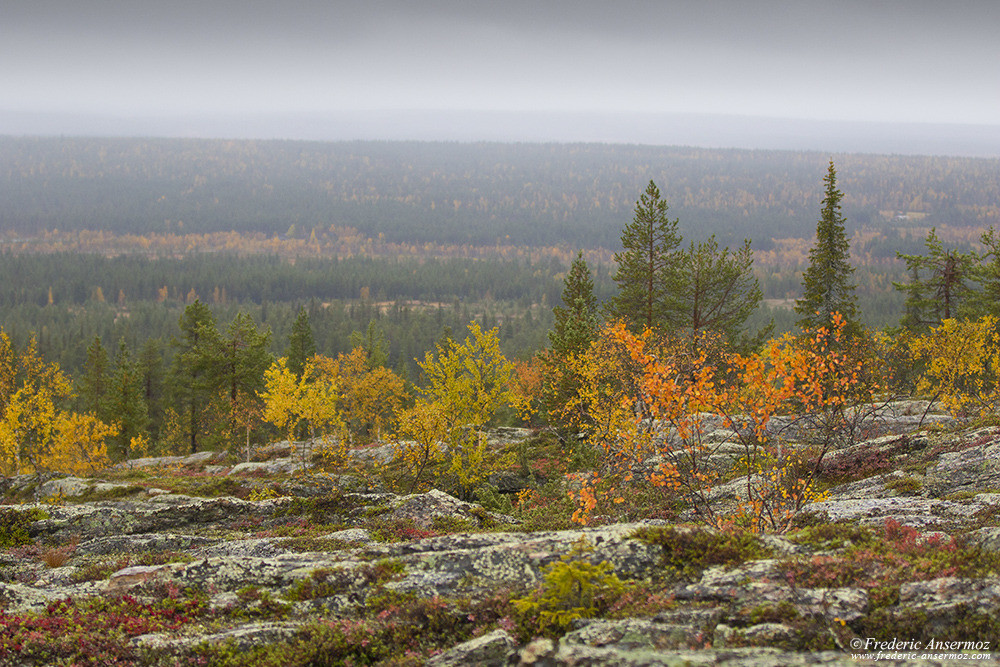 Finnish lapland landscape, Urho Kekkonen National Park