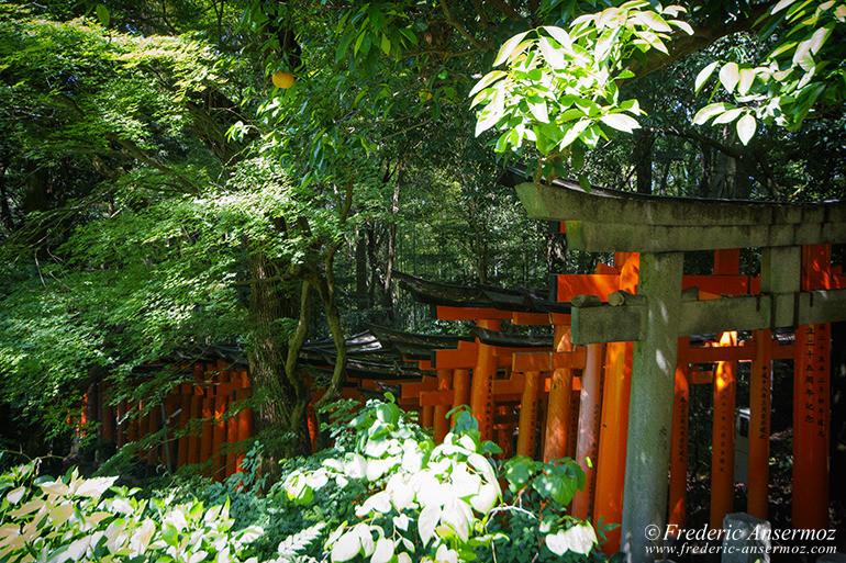 Fushimi inari 09