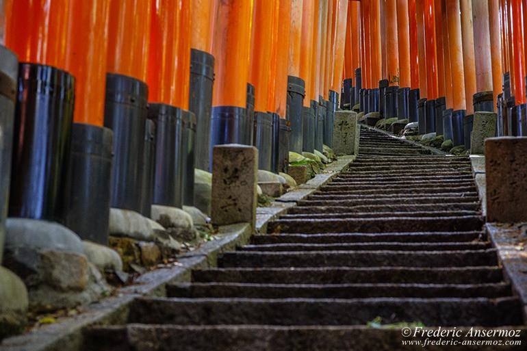 Fushimi inari 14