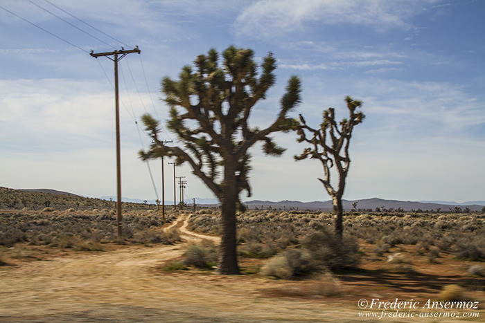 grand-canyon-0505