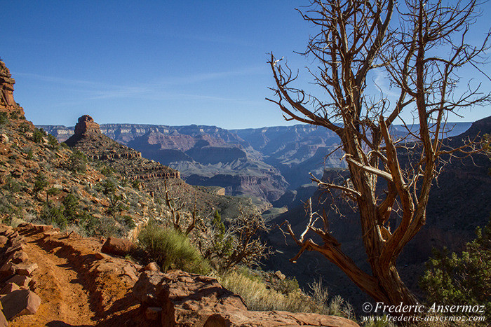 Grand canyon 0625