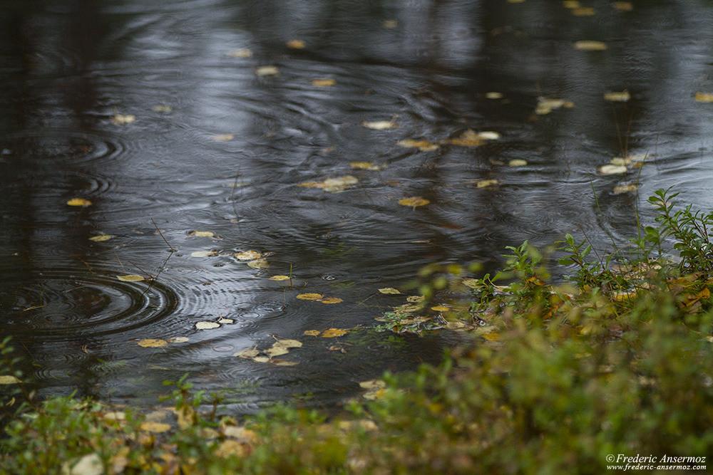 Rain in Finland, Hossa National Park
