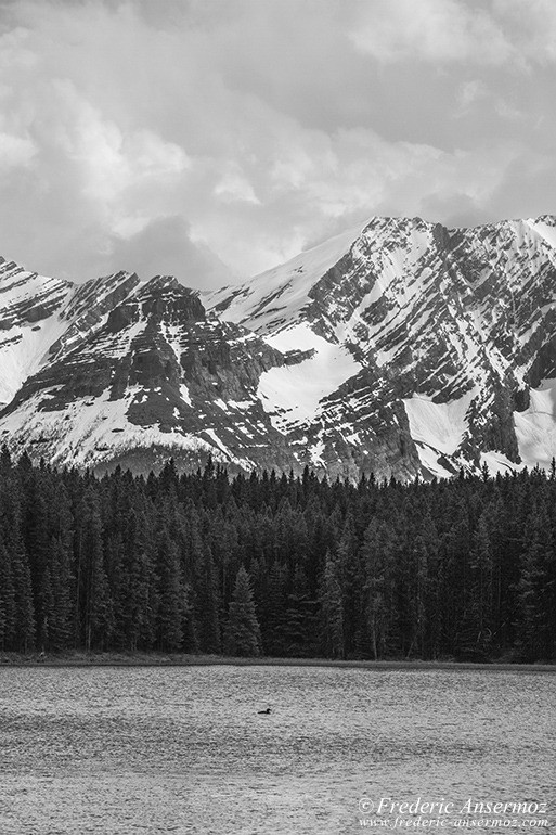 Kananaskis country 44
