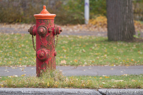 Fire plug photography in street
