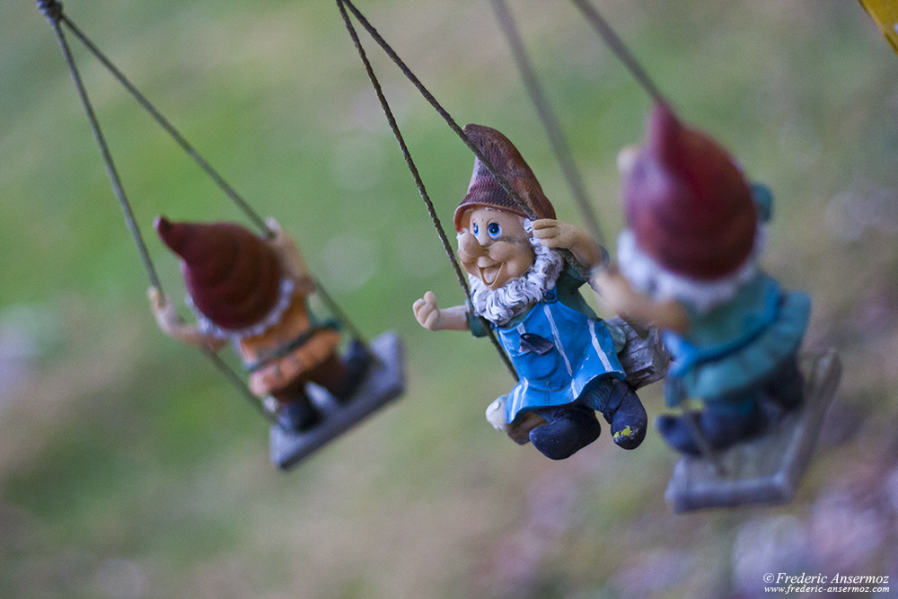 Garden gnomes on a swing