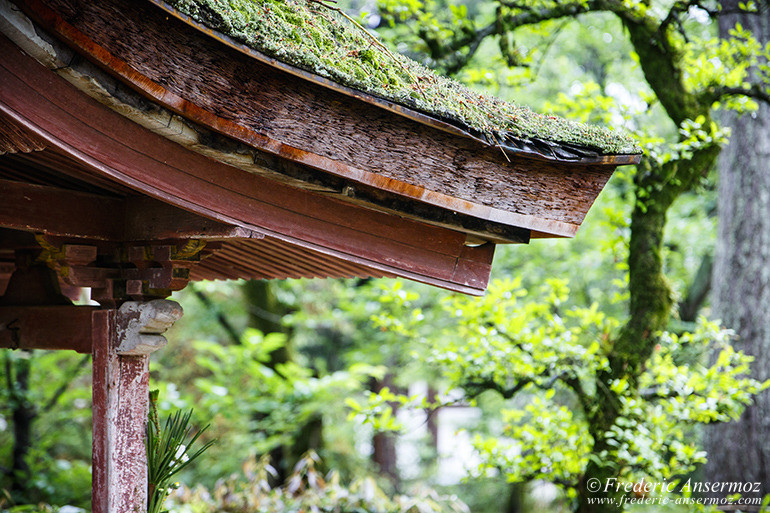Nara toshodaiji temple 02