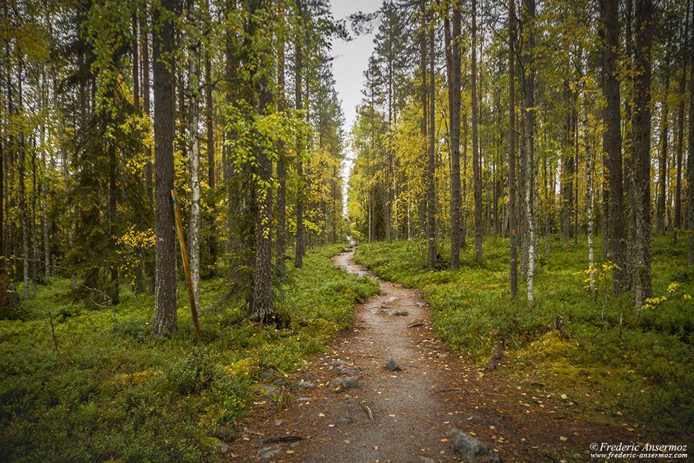 Pieni Karhunkierros Trail, near Juuma village, Finland