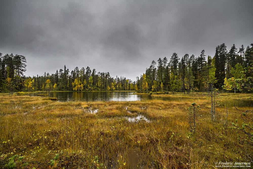 Pyröreälampi swampy area, peatlands in Finland, Oulanka