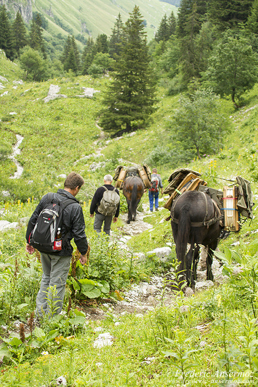 Randonnee suisse 09