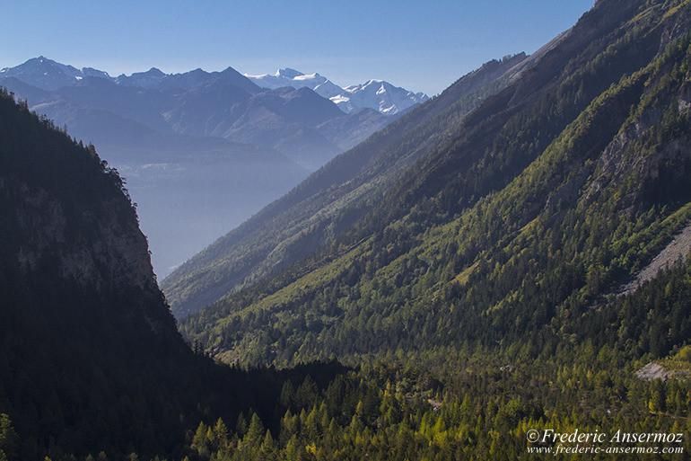Suisse nature 01