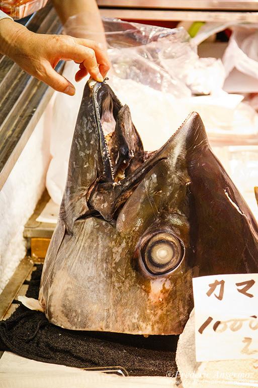 Tokyo fish market 04