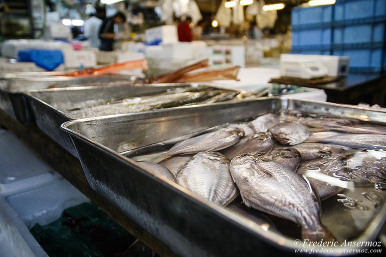Tokyo fish market 08