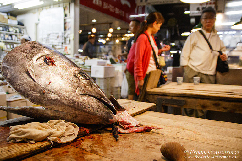 Tokyo fish market 12