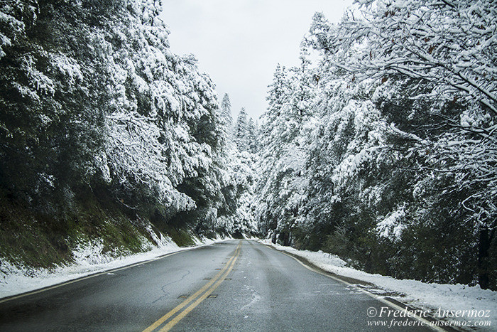 Yosemite 1248
