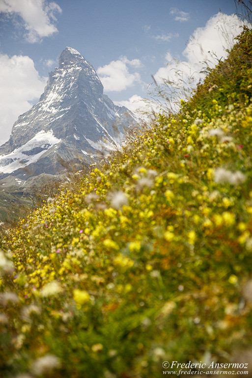 Zermatt switzerland 12