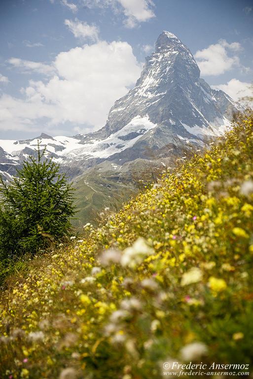 Matterhorn switzerland 20