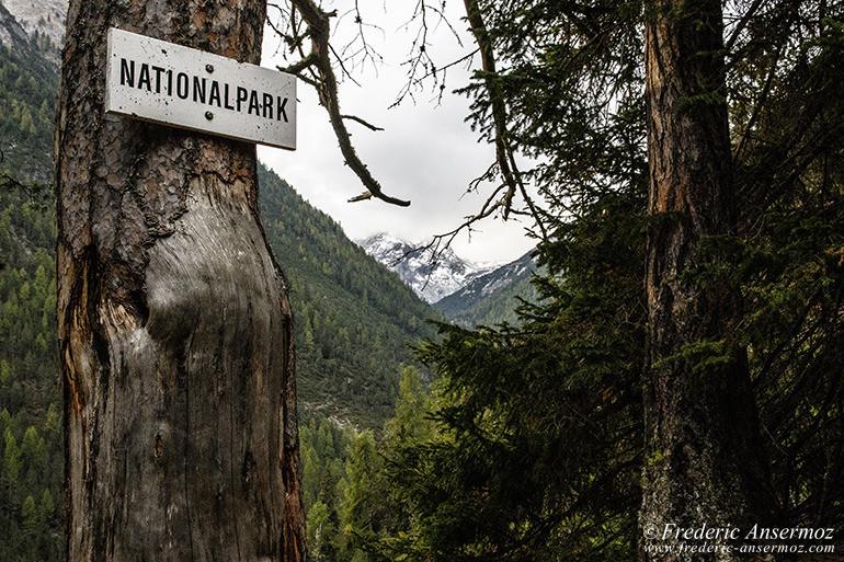 Zernez national park 01